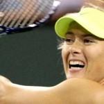 US Open/dia 1: Halep, Sharapova e Radwanska estreiam nesta segunda-feira