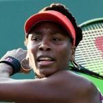 Nos primeiros jogos das 4ªas do Miami Open, Venus enfrenta Suarez Navarro e Petkovic joga contra Pliskova